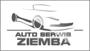 Auto company logo